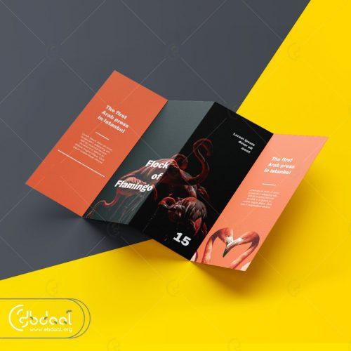 Dl Leaflet - بروشور مطوي - DL Broşür